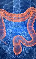 Intestinal Seepage